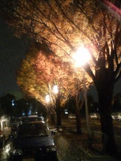 image/piyo2-2005-11-27T00:41:57-1.jpg